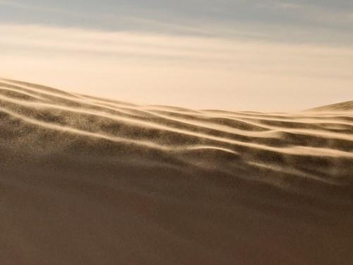Dunes dans le vent