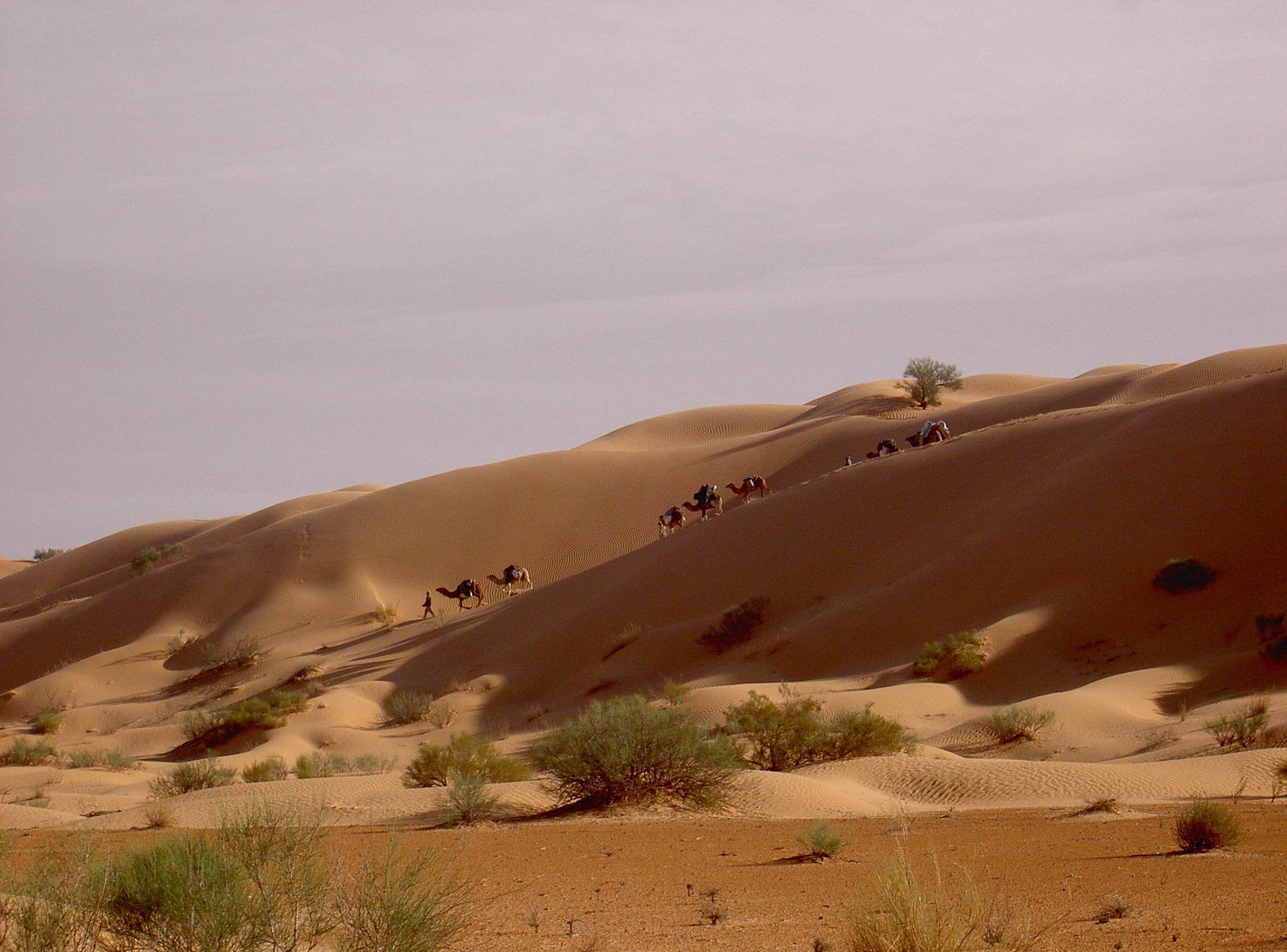 dunes-132