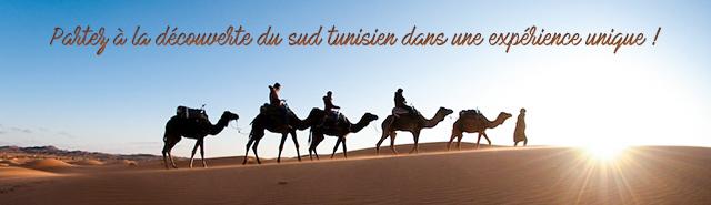 Le sud tunisien à partir de Djerba