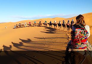 Trekking et randonnées dans le sahara